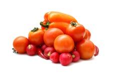 新鲜的鲜美蔬菜 库存图片