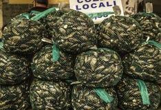 新鲜的鲜美黑淡菜袋子山被显示在一个地方鱼市上在西西里岛 免版税图库摄影
