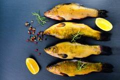 新鲜的鲤属鱼顶视图钓鱼用芳香草本、香料和菜在板岩背景, 免版税库存照片