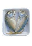 新鲜的鲭鱼 免版税库存照片