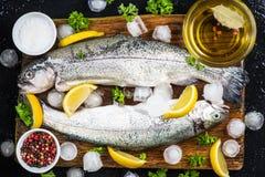 新鲜的鳟鱼鱼为做准备用卤汁泡 免版税库存图片