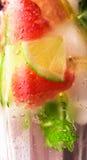 新鲜的鸡尾酒用薄菏,葡萄柚 免版税图库摄影
