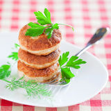 新鲜的鸡炸肉排 免版税库存照片