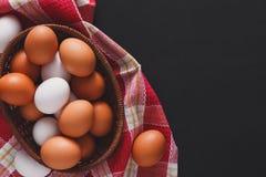 新鲜的鸡红皮蛋,有机耕田背景 免版税库存照片