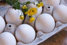 新鲜的鸡蛋和野花 免版税库存照片