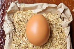 新鲜的鸡蛋 免版税库存照片
