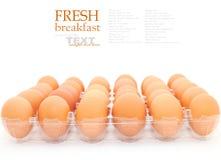 新鲜的鸡蛋 库存照片