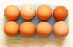 新鲜的鸡蛋 免版税库存图片