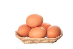 新鲜的鸡鸡蛋 免版税库存照片