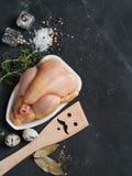 新鲜的鸡 免版税图库摄影