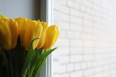 新鲜的黄色郁金香花束在花瓶的 免版税库存照片