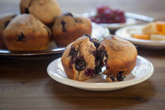新鲜的整个五谷蓝莓松饼 免版税图库摄影