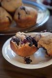新鲜的整个五谷蓝莓松饼 库存照片