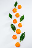 新鲜的整个蜜桔和叶子在白色 免版税库存照片