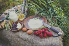 新鲜的水多的有机草莓用牛奶、面粉、鸡蛋和黄油在桌上 库存图片