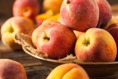 新鲜的水多的有机黄色桃子 库存照片