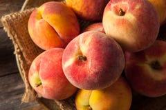 新鲜的水多的有机黄色桃子 库存图片