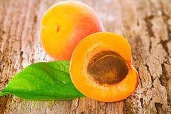新鲜的水多的杏子 免版税库存照片