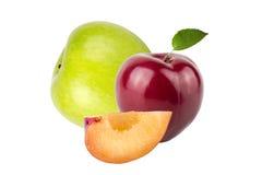新鲜的水多的果子(李子、苹果,香蕉)在轻的背景 库存照片