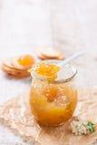 新鲜的水多的果酱用在一个瓶子的无花果用薄脆饼干和酸奶干酪早餐 库存照片