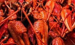 新鲜的水多的煮沸的小龙虾特写镜头 背景许多饺子的食物非常肉 顶视图 库存照片