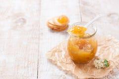 新鲜的水多的水果的果酱用在一个瓶子的无花果用薄脆饼干和酸奶干酪早餐 免版税库存图片