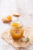 新鲜的水多的水果的果酱用在一个瓶子的无花果用薄脆饼干和酸奶干酪早餐 免版税图库摄影