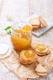 新鲜的水多的水果的果酱用在一个瓶子的无花果用薄脆饼干和酸奶干酪早餐 库存照片