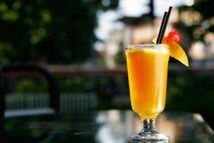 新鲜的玻璃汁液桔子 免版税图库摄影