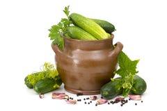 新鲜的黄瓜、香料和草本 免版税图库摄影