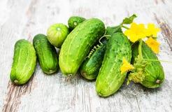 新鲜的黄瓜 库存图片