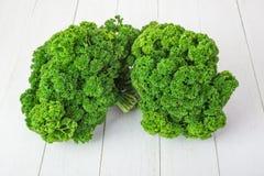 新鲜的绿色卷曲荷兰芹 库存图片