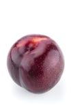 新鲜的紫色李子 库存图片