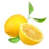 与绿色叶子的新鲜的黄色柠檬 库存图片