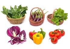 新鲜的绿色查出的叶子设置了蔬菜 免版税库存照片
