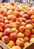 新鲜的黄色桃子 库存图片