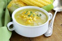 新鲜的黄色玉米汤  免版税库存图片