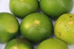 新鲜的绿色石灰 库存图片