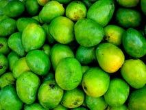 新鲜的绿色芒果 免版税库存图片