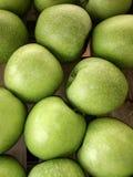 新鲜的绿色苹果,克利特,希腊 库存图片
