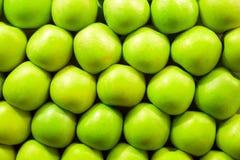 新鲜的绿色苹果 库存图片