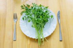 新鲜的绿色荷兰芹特写镜头,富有在维生素C上,在白色婆罗双树 图库摄影