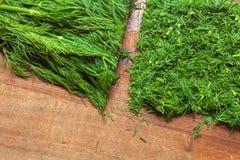 新鲜的绿色莳萝 图库摄影