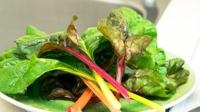 新鲜的绿色菜叶子 免版税库存照片