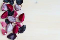 新鲜的紫色菜的汇集在木背景的 库存照片
