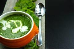 新鲜的绿色菠菜汤和叶子 库存照片