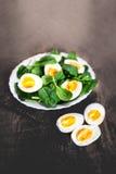 新鲜的绿色菠菜婴孩叶子和煮沸的鸡蛋在一半切开了  图库摄影