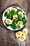 新鲜的绿色菠菜婴孩叶子和煮沸的鸡蛋在半o切开了 免版税库存照片