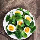 新鲜的绿色菠菜婴孩叶子和煮沸的鸡蛋在半o切开了 免版税库存图片