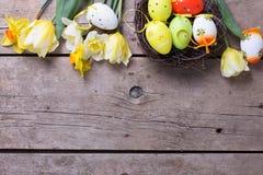 从新鲜的黄色郁金香和黄水仙的边界开花, decorati 免版税库存图片